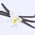 where does vanilla bean extract come from